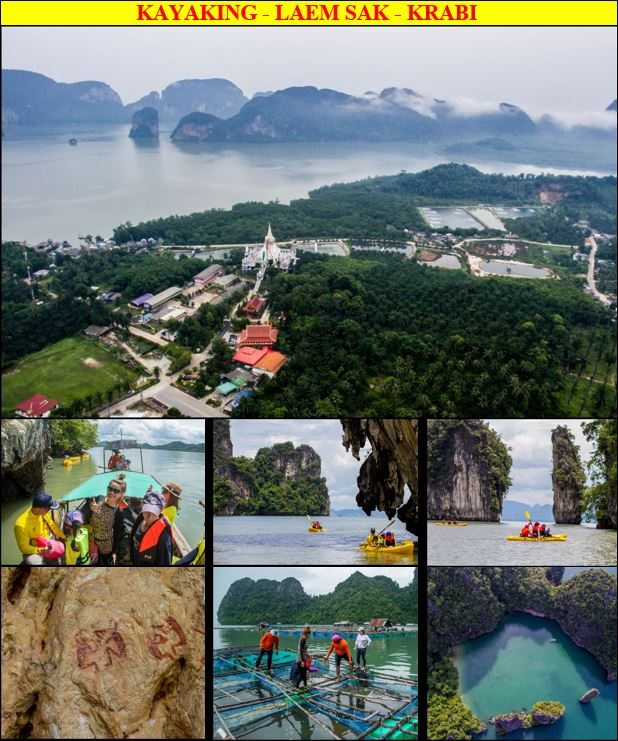 From Phuket, an adventure day tour to Laem Sak in Krabi to paddle with kayaks in the mangrove swamp along the cliffs with caves and primitive paintings inside Than Bok Khorani National Park